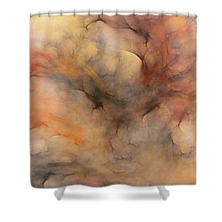 Stormy Shower Curtain by David Lane