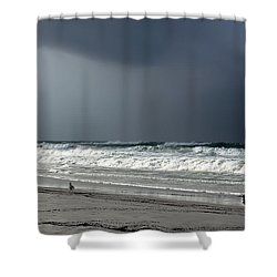 Shower Curtain featuring the photograph Stormy by Debra Forand
