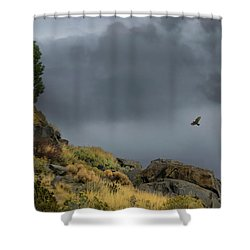 Shower Curtain featuring the photograph Stormy Flight by Frank Wilson