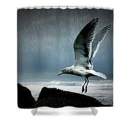 Stormy Landing Shower Curtain