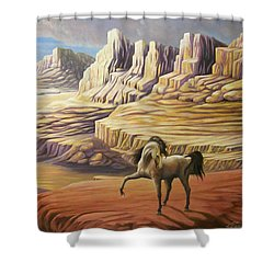 Stormy Shower Curtain by Loxi Sibley