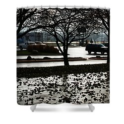 Stormy Reflection Shower Curtain by Linda Shafer