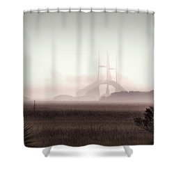 Stormy Surprise Shower Curtain by Laura Ragland