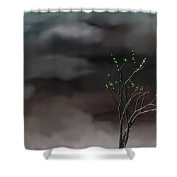 Stormy Weather Shower Curtain by David Lane