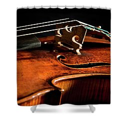 Stradivarius Shower Curtain