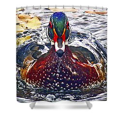 Straight Ahead Wood Duck Shower Curtain