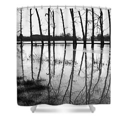 Stranded Trees II Shower Curtain by Hazy Apple
