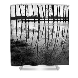 Stranded Trees Shower Curtain by Hazy Apple