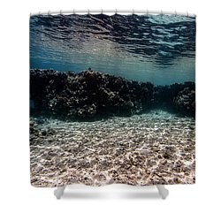 Shower Curtain featuring the photograph Strange Shores by Rico Besserdich