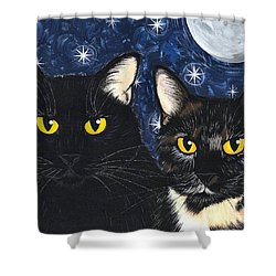 Strangeling's Felines - Black Cat Tortie Cat Shower Curtain