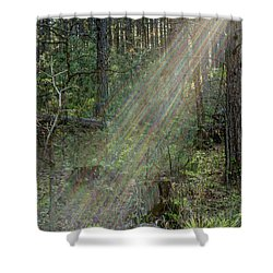 Stratolight Shower Curtain