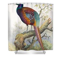 Strauchs Pheasant Shower Curtain