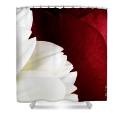 Strawberry And Cream Shower Curtain by Mark Johnson