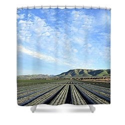 Shower Curtain featuring the photograph Strawberry Fields Forever 2 by Floyd Snyder