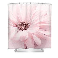 Shower Curtain featuring the photograph Strawberry Ice by Darlene Kwiatkowski