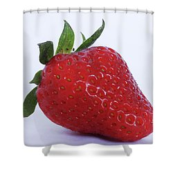 Strawberry Shower Curtain by Julia Wilcox
