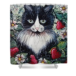 Shower Curtain featuring the painting Strawberry Lover Cat by Natalie Holland