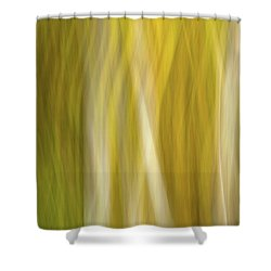 Streaks Of Color Shower Curtain