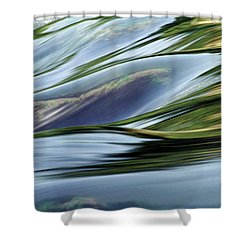 Stream 3 Shower Curtain by Dubi Roman