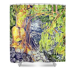 Stream At Laupahoehoe Shower Curtain by Fay Biegun - Printscapes
