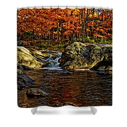Stream In Autumn 57 In Oil Shower Curtain