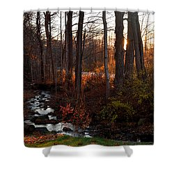 Stream In Autumn Shower Curtain by Diane Lent