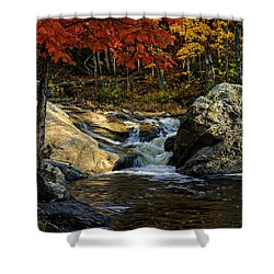 Shower Curtain featuring the photograph Stream In Autumn No.17 by Mark Myhaver