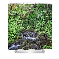 Stream In The Rainforest Shower Curtain