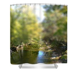 Shower Curtain featuring the photograph Stream Reflections by EricaMaxine  Price