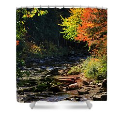 Stream Shower Curtain by Tom Prendergast