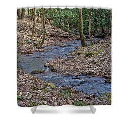 Shower Curtain featuring the photograph Stream Up The Hollow by Denise Romano