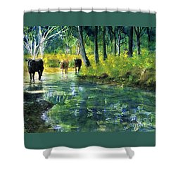 Streaming Cows Shower Curtain