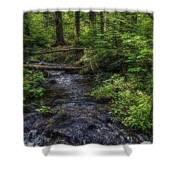 Shower Curtain featuring the photograph Streaming by Kendall McKernon