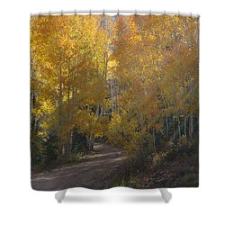 Streaming Light Paiute Trail Fremont Utah Shower Curtain