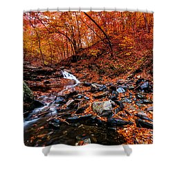 Shower Curtain featuring the photograph Stress Relief by Edward Kreis