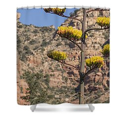 Stretching Tall Shower Curtain