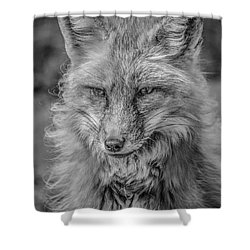 Striking A Pose Black And White Shower Curtain