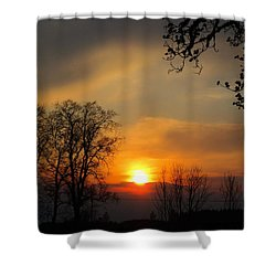 Striking Beauty Shower Curtain