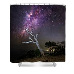 Striking Milkyway Over A Lone Tree Shower Curtain