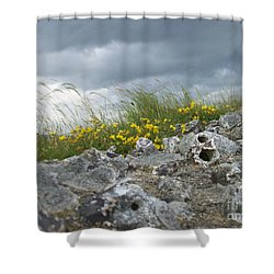 Striking Ruins Shower Curtain by Mary Mikawoz