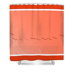 String  Of Brids In Red Shower Curtain
