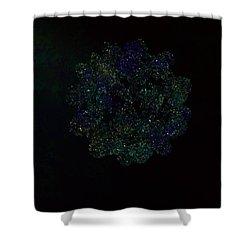 Shower Curtain featuring the digital art String Vibrations Calabi Yau Variety by Digital Feng Shui