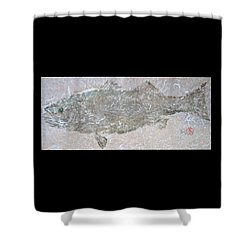 Striped Bass On White Thai Unryu  Shower Curtain