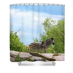 Mama, Who's That Idiot Taking My Picture? Shower Curtain