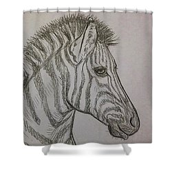 Shower Curtain featuring the drawing Striped Stud by Jennifer Hotai