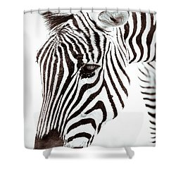 Shower Curtain featuring the photograph Striped by Wade Brooks
