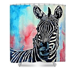 Stripes And A Mohawk Shower Curtain