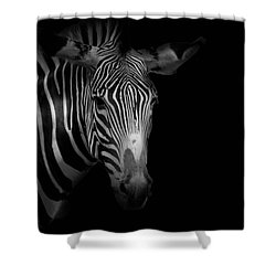 Stripes Number 5 Shower Curtain