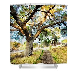 Strolling Down The Path Shower Curtain
