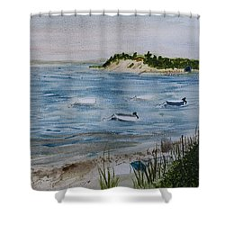 Strong Island Shower Curtain by Donna Walsh